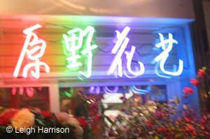 webneonchinesesign2009aa.jpg